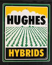 huges-hybride
