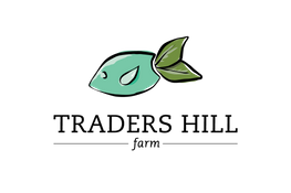 traders-hill-logo